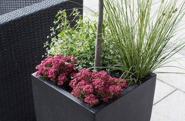 Erste Wohnung mit Terrasse – Tipps zur Dekoration und Pflege