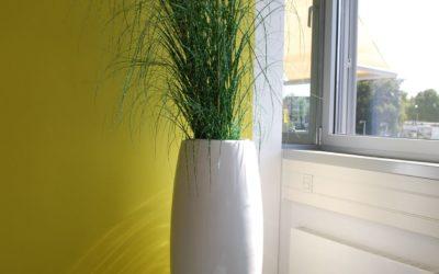 Grüner wohnen: Dekoration mit Pflanzkübeln